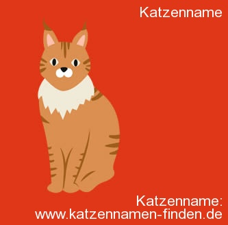 Katzenname  - Katzennamen finden
