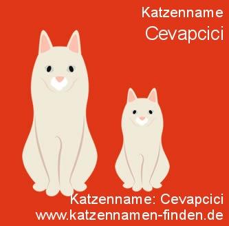 Katzenname Cevapcici - Katzennamen finden