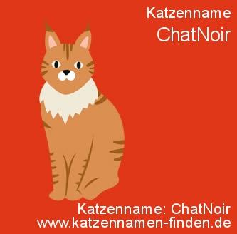 Katzenname ChatNoir - Katzennamen finden