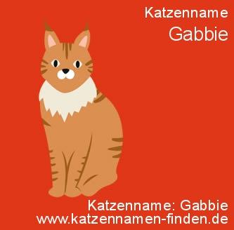 Katzenname Gabbie - Katzennamen finden
