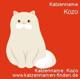Katzenname Kozo - Katzennamen finden