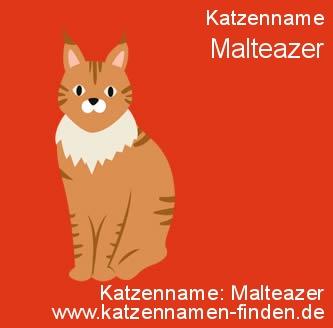 Katzenname Malteazer - Katzennamen finden