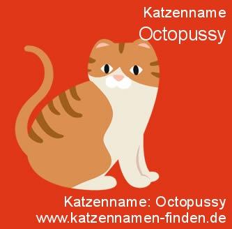Katzenname Octopussy - Katzennamen finden