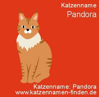 Katzenname Pandora - Katzennamen finden