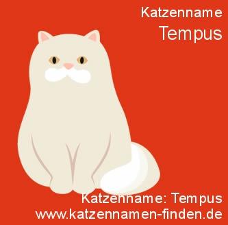 Katzenname Tempus - Katzennamen finden