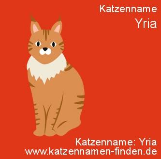 Katzenname Yria - Katzennamen finden